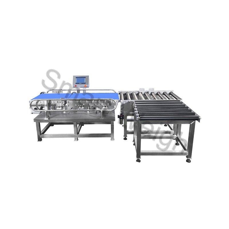 Smart Weigh Smart Weigh SW-C500 Checkweigher Inspection Machine image3