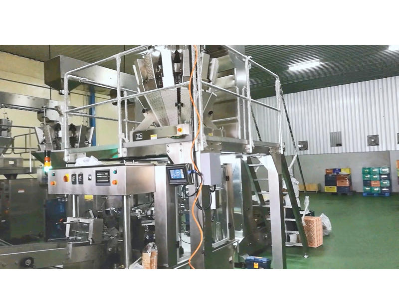 Dried Fruit Doypack Packing Line