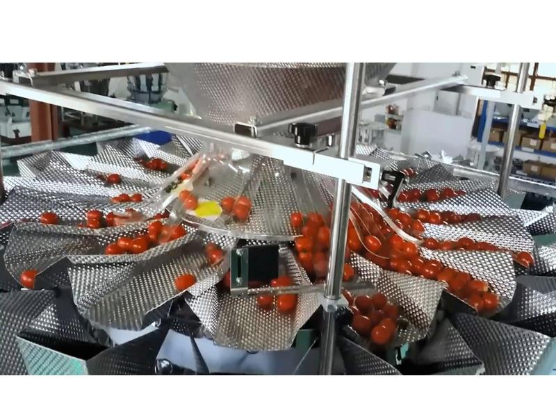 Cherry Tomato Preformed Bag Packing Line