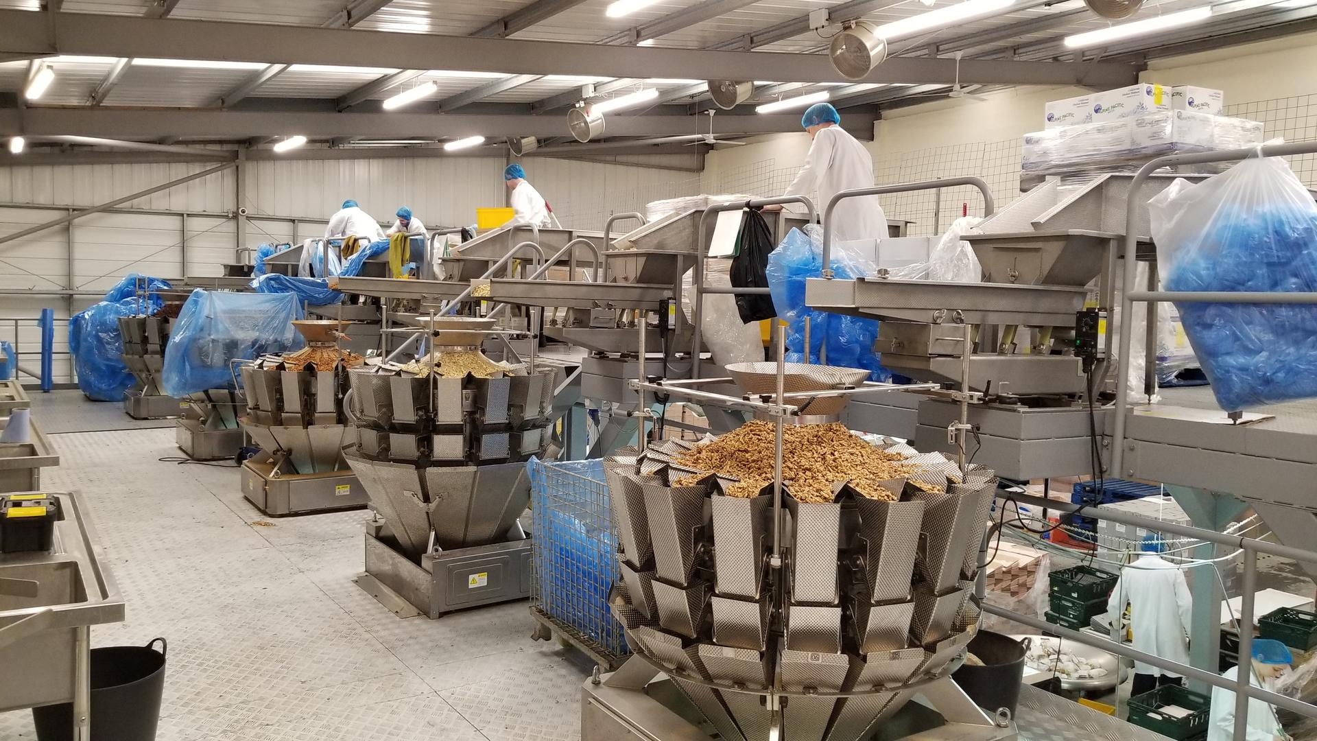 14 Head Multihead Weigher Packing Machine And System