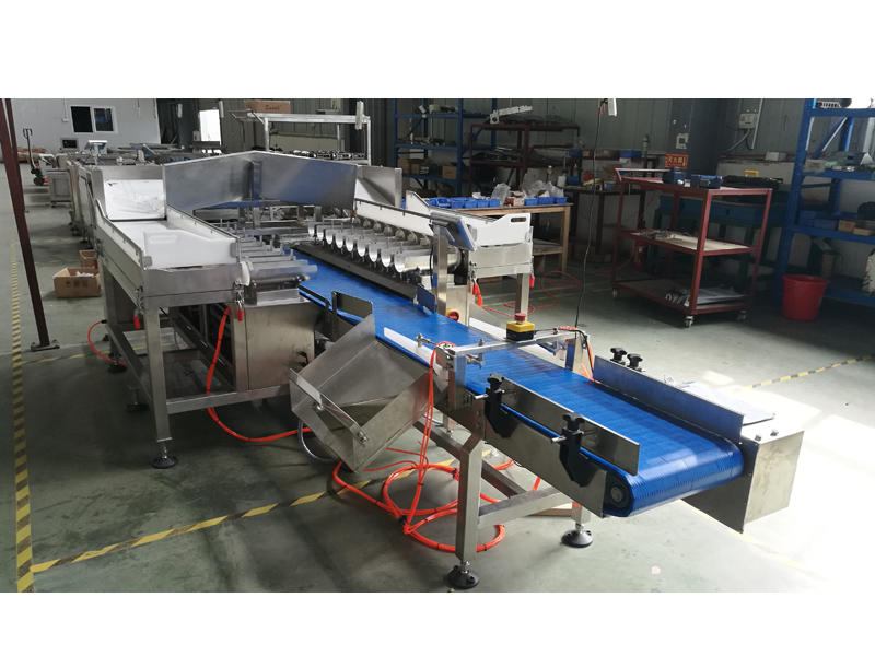 New! Fish Weigher 18 Head Combination Multihead Weigher