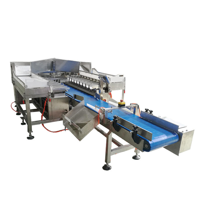 SW-LC18 Fish Weigher 18 Head Linear Combination Weigher