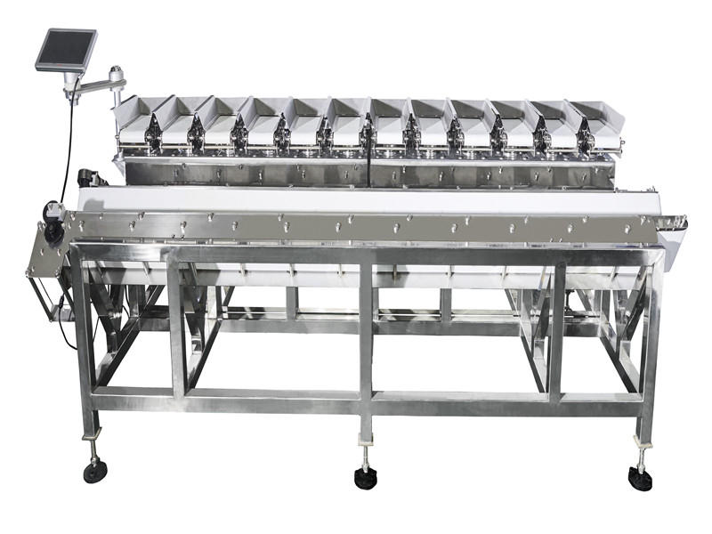 V type Linear combination weigher- Carrots