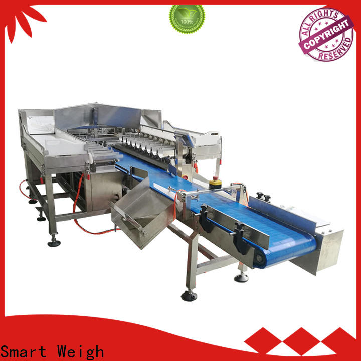 best ishida multihead weigher smart factory price for food labeling