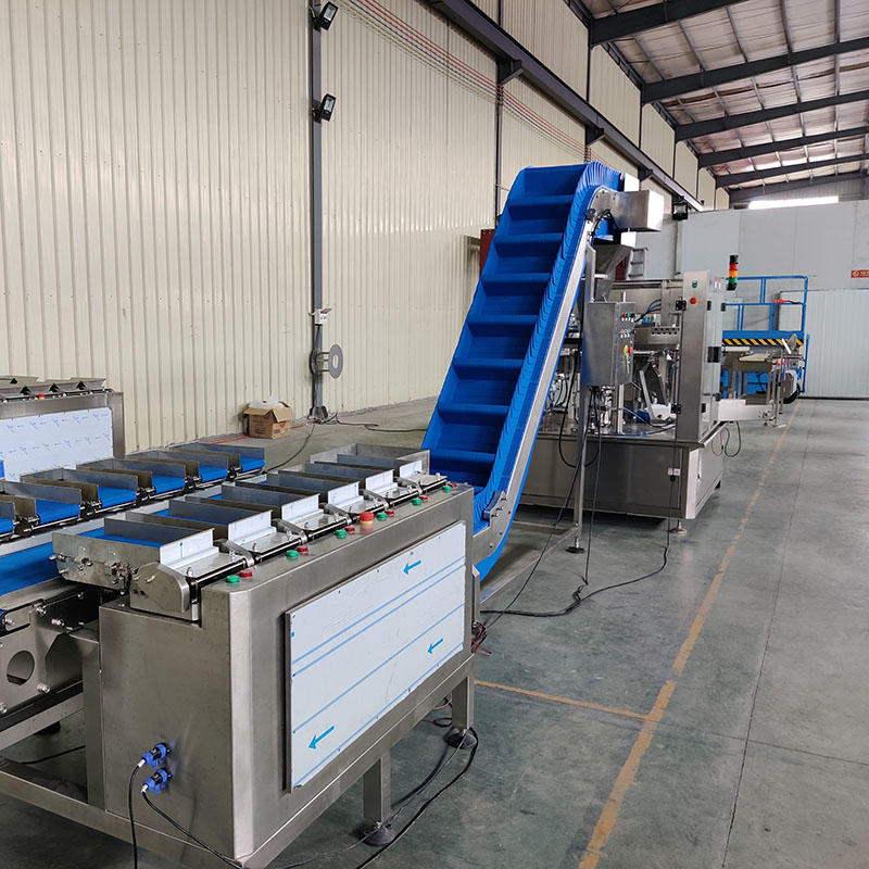linear combination weighing smartweighpack packing system for fish fillet