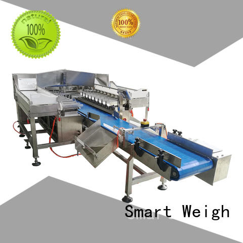 Smart Weigh pouch packing machine supply for foof handling